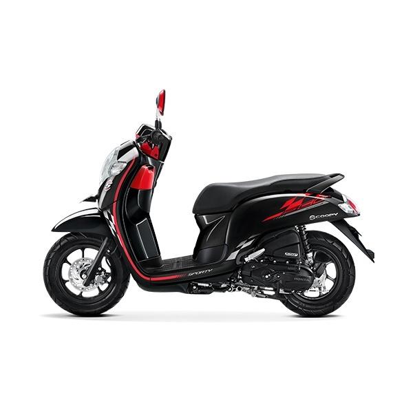 NEW HONDA SCOOPY 2020 Honda Scoopy